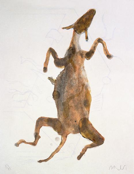 Acróstico de burro III